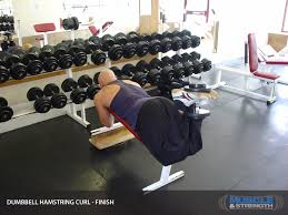 Bench Exercises With Dumbbells Dumbbell Hamstring Curl Exercise Guide U0026 Tips