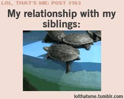 Funny Sibling Memes - funny and relatable uploaded by broken promises