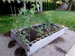 Vegetable Beds The 25 Best Raised Garden Beds Cinder Blocks Ideas On Pinterest