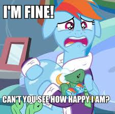 Rainbow Dash Meme - 882621 bathrobe clothes crying dashie slippers denial