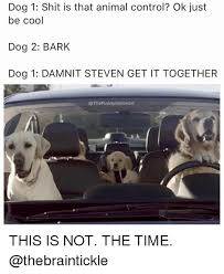Cool Dog Meme - dog 1 shit is that animal control ok just be cool dog 2 bark dog 1