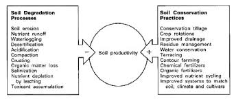 mnwikiess topic 5 soil systems and terrestrial food productions