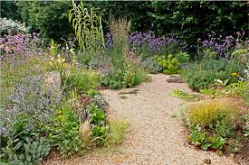 gravel gardens rhs gardening