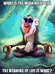 The Meaning Of Meme - what is the meaning of life the meaning of life is what rafiki