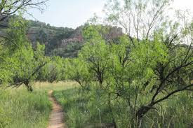 Palo Duro Canyon State Park Map The Lighthouse Via Givens Spicer Lowry Loop In Palo Duro Canyon