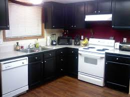 Black Kitchen Cabinets by Download Black Painted Kitchen Cabinets Homecrack Com