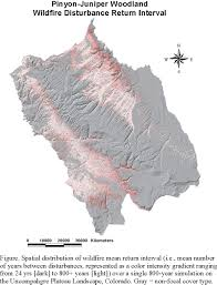 Definition Of Wildfire Intensity by Pj Fig Wfire Rimap Jpg