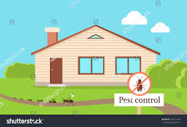 pest control concept cockroach leaving house stock vector