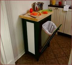 kitchen trash can ideas built in trash cans solemio