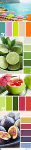 1509 best color schemes images on pinterest colors color boards