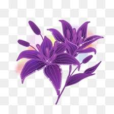 Purple Lillies Beautiful Lily Png Images Vectors And Psd Files Free Download