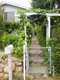 add trellis to chain link fence haammss