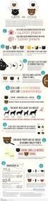 151 best in dog we trust images on pinterest animals puppy love
