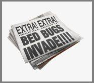 Bed Bug Exterminator Detroit Bed Bug Exterminator On Bed Bugs Exterminator