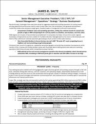Resume Samples For Executives sample resume ceo president ceo chief executive officer resume
