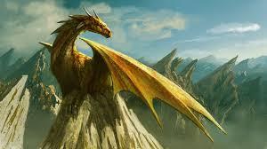 photos what is a dragon u003e u003e scuttlebutt sailing news