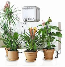self watering plants claber 8053 oasis 4 programs 20 plants garden automatic drip