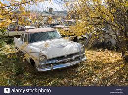 car yard junkyard classic car junk yard scrap retro 1950 u0027s 1950 old stock photo