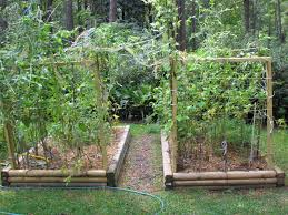 raised vegetable garden layouts u2013 home design and decorating