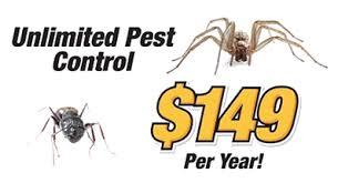 pest inc 149 a year portland tn local expert