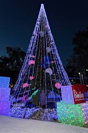 red nose unveils canberra u0027s christmas tree red nose