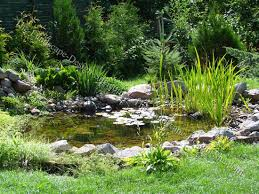Backyard Pond Images Natural Stone Backyard Pond