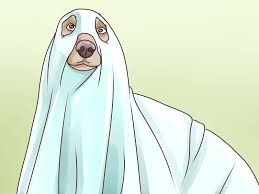 6 ways to make a ghost wikihow