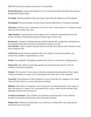 Study Guide Anatomy And Physiology 1 Chapter 1 Study Guide Anatomy The Study Of The Structure Of The