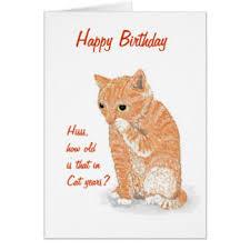 kitten birthday cards u0026 invitations zazzle co nz
