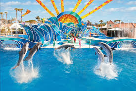 What Is The Cost Of Six Flags Tickets San Diego Zoo Legoland Disneyland Six Flags Amusement Parks