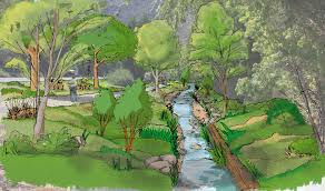native plant restoration santa barbara las positas creek restoration