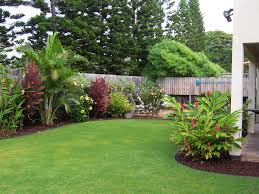 landscaping pictures of front yard landscaping ideas hawaii