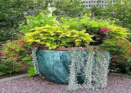 nice garden planting ideas garden design ideas get inspired photos