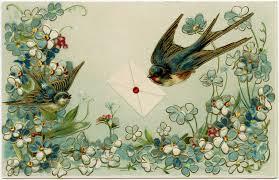 vintage birds and flowers postcard free design