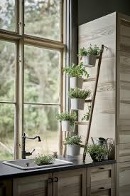 kitchen herbs 13 plant stands to give your houseplants a home kitchen herb