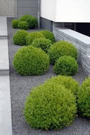 best driveway landscaping ideas on pinterest sidewalk rock garden
