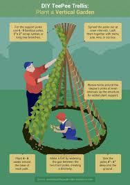 best 25 vegetable garden design ideas on pinterest vege garden