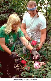 Flower Delivery Edina Mn - edina mn stock photos u0026 edina mn stock images alamy
