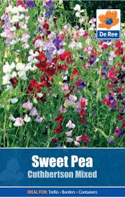 sweet pea cuthbertson mixed seeds seeds from de ree uk