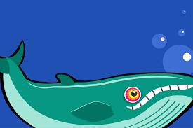 blue whale free stock photo public domain pictures