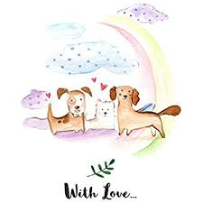 rainbow bridge pet sympathy card for pet