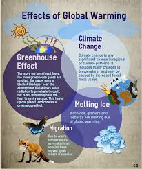 global warming causes and effects causes and effects of global warming essay term paper service