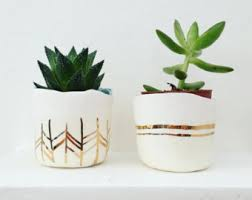 small planter pre order rose gold ceramic succulent planter large to small