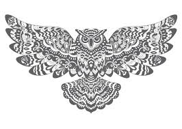 Patterned Flying Owl Drawing Illustration Stylized Decorative Vector Owl Drawing For Coloring Book Stock