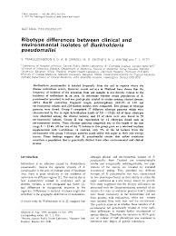 Scholarly Essay Example Microbiology Society Journals Ribotype Differences Between