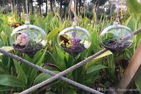 hanging terrarium kit glass ball vase for home decoration garden