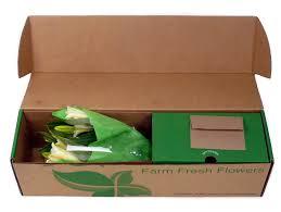 amazon com benchmark bouquets 8 stem stargazer lily bunch with