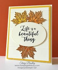 690 best colorful seasons images on thanksgiving cards