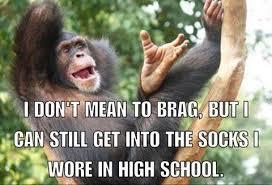 Chimp Meme - a boastful chimp memes lol