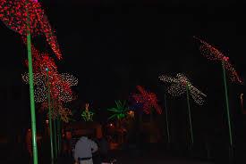 phoenix zoo lights military discount arizona destinations scenic areas in arizona page 5